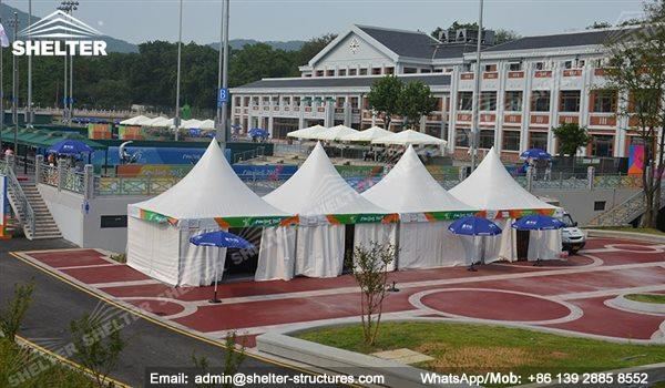 Outdoor Best Party Tent for Cheap Sale - garden tent - backyard party gazebo - high peak tent - raj tent (2)