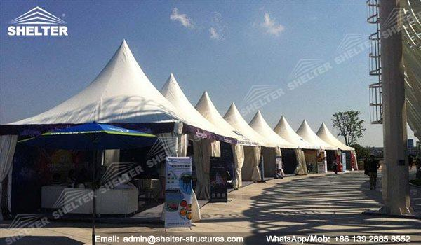 Outdoor Best Party Tent for Cheap Sale - garden tent - backyard party gazebo - high peak tent - raj tent (56)